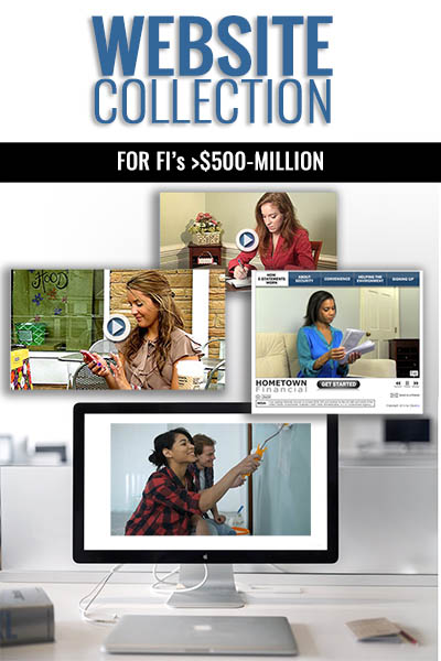 "The Website Collection for FI's >$500 Million Asset Size"" class=""skip-lazy"" /></div> 					                                                  		</div>                             </div>         	        </div>                          <div class="